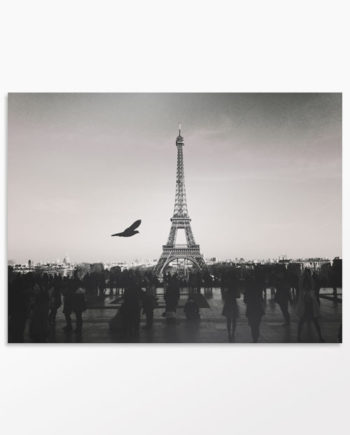 Photo design Un amour de Paris