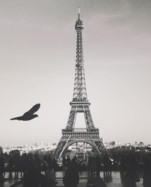 Photo design Un amour de Paris