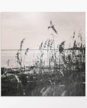 Photo artistique noir et blanc Les marais Salants