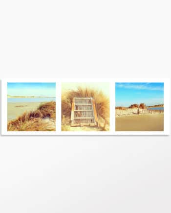 Triptyque photo Balade en Camargue