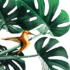 Tableau colibri sur plante verte pour une décoration exotique