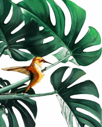 Tableau colibri sur plante verte