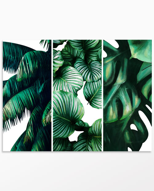 Tableau feuilles tropicales fond blanc