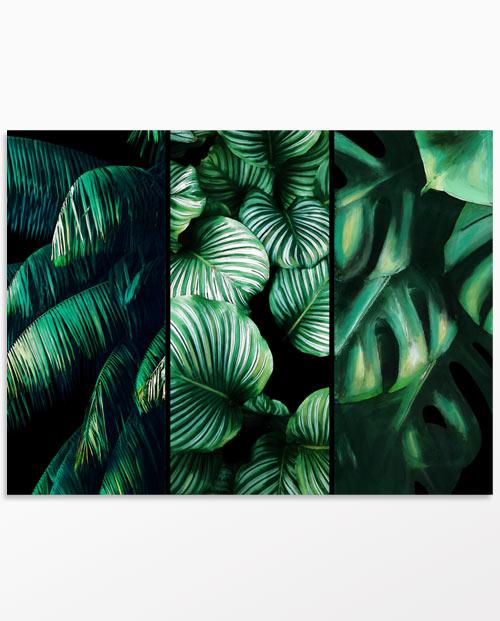 Tableau feuilles tropicales fond noir