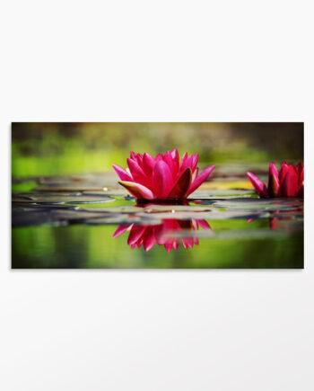 Tableau nénuphar et fleur de Lotus