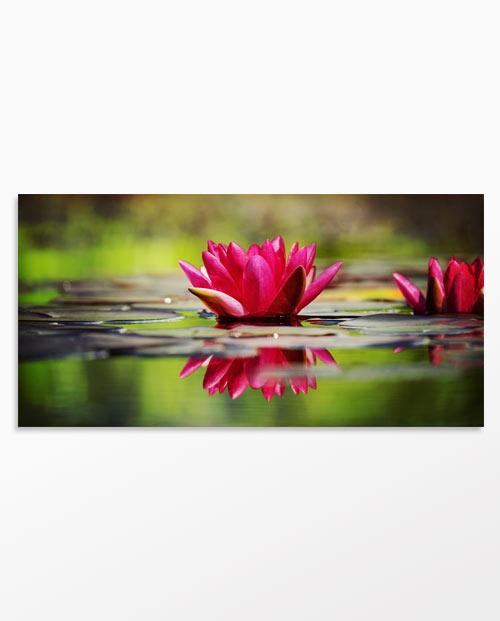 Tableau nénuphar et fleur de lotus pour une déco zen et nature